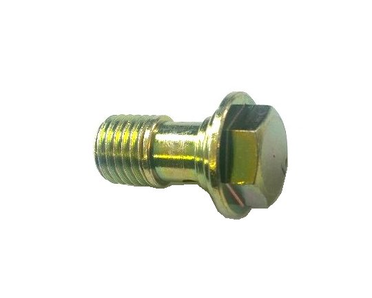 Fuel Inlet Banjo Bolt